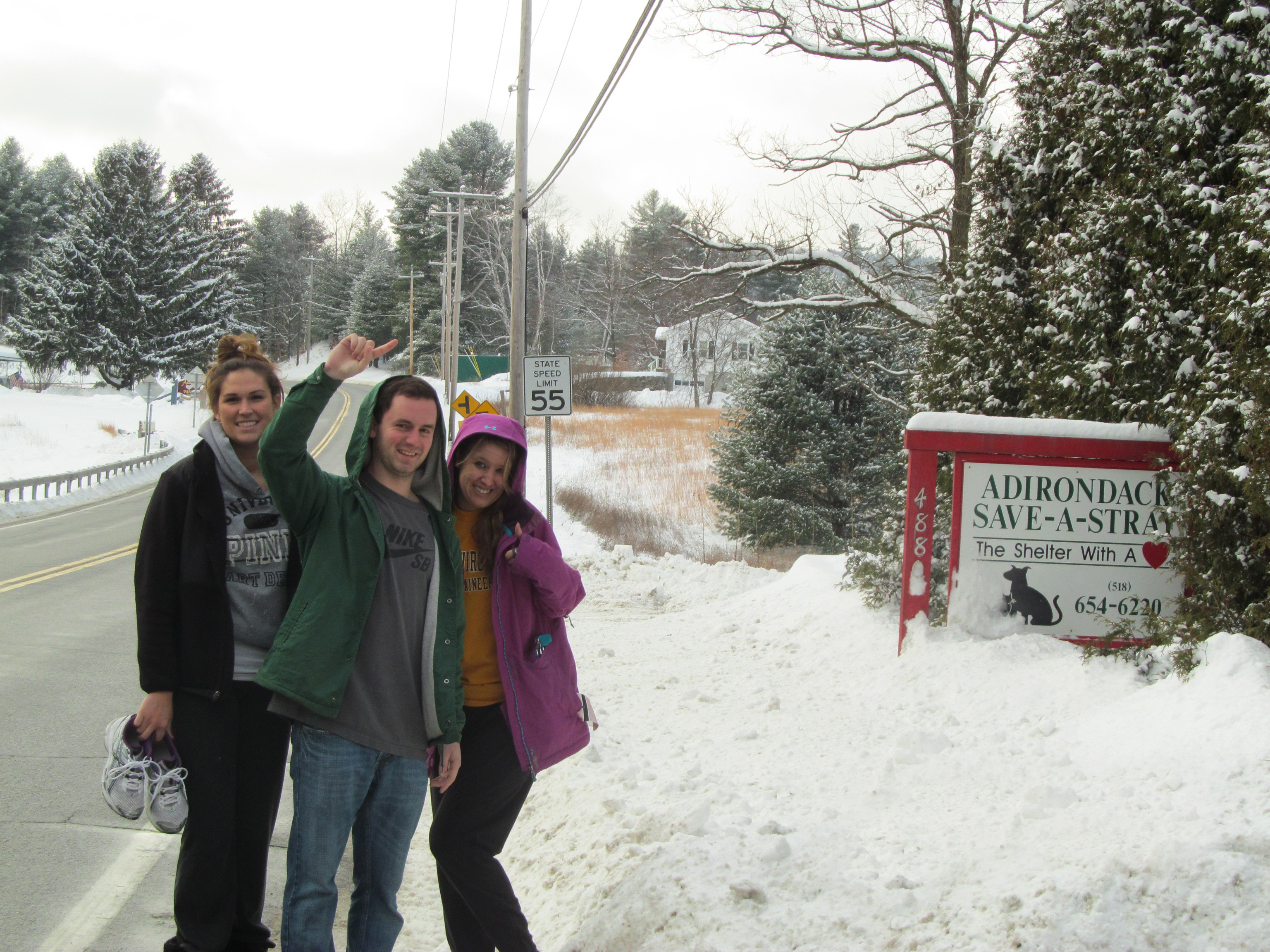 adirondack save a stray Act of Kindness #8: Volunteering at Adirondack Save A Stray – SEO  adirondack save a stray